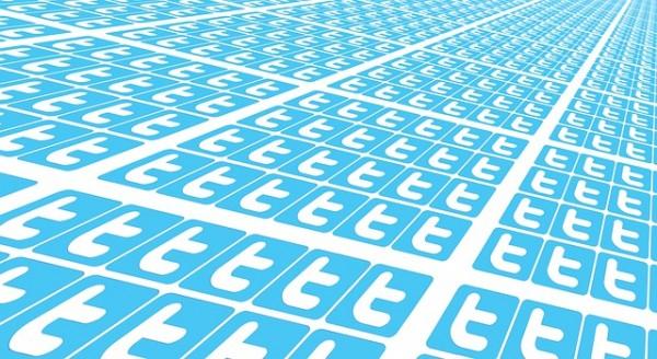 twitter-many-715802_640